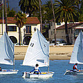 Santa Barbara Harbor Yacht Race by Barbara Snyder