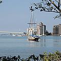 Sarasota Bay  by Christiane Schulze Art And Photography