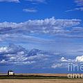 Saskatchewan Farmland by Mark Newman