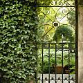 Savannah Gate Impasto by Sharon Foster