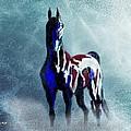Sea Horse by Tarja Stegars