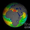 Sea Surface Salinity, Aquarius Image by Nasa