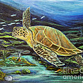Sea Turtle by Mike McCaughin