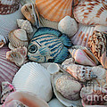 Seashells And Blue Fish by Luv Photography