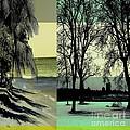 Seasons by Iris Gelbart