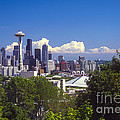 Seattle City View by Bob Phillips