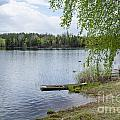 Serene Lake View by Kennerth and Birgitta Kullman
