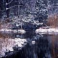 Serenity  by Skip Willits