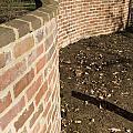 Serpentine Wall University Of Virginia by Jason O Watson