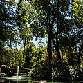 Seville - Park Maria Luisa by Andrea Mazzocchetti