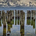 Shore Pilings At Fayette State Park by Randall Nyhof