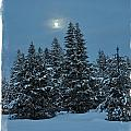 Silent Night by Image Takers Photography LLC - Laura Morgan