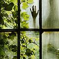 Silhouette by Margie Hurwich