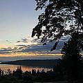 Silhouettes At Dawn by E Faithe Lester