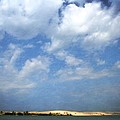 Silver Lake Sand Dunes by Michelle Calkins