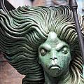 Siren by David Nicholls