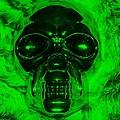 Skull In Green by Rob Hans