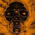 Skull In Orange by Rob Hans
