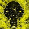 Skull In Yellow by Rob Hans