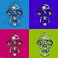 Skulls In Quad Colors by Rob Hans