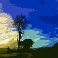 Sky by Diana Moya