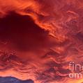 Sky Fire by Krissy Katsimbras