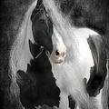 Slainte by Fran J Scott