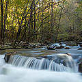 Smoky Mountain Stream by Doug McPherson