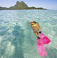 Snorkeling In Polynesia by M Swiet Productions