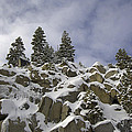Snow Covered Cliffs And Trees by Carl Deaville