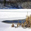 Snow On Lake by Thomas R Fletcher