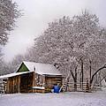 Snowy Day On The Farm by David and Carol Kelly
