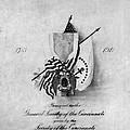 Society Of The Cincinnati by Granger