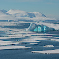 South Of The Antarctic Circle by Inger Hogstrom