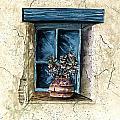 Southwest Window Sill by Steven Schultz