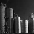 Spangle Grain Elevator by Paul DeRocker