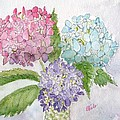 Spring Bouquet by Bev Veals