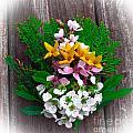 Spring Bouquet by Scott Hervieux