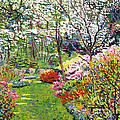 Spring Forest Vision by David Lloyd Glover
