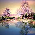 Spring In The Gardens by Tara Turner