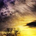 Spring Sunrise  by Thomas R Fletcher