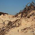 St Joseph Sand Dunes by Adam Jewell