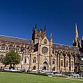 St. Mary's Cathedral by Jason O Watson