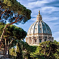St Peters Basilica Dome by Jon Berghoff
