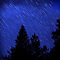 Star Trails In Night Sky by Lane Erickson