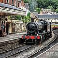 Steam Train by Adrian Evans