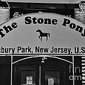 Stone Pony by Paul Ward