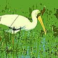 Storks  by Ronald Jansen
