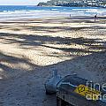 Storm Drainage Pipe On Manly Beach by Jason O Watson