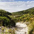 Strahan Coast Landscape Winding To The Ocean by Jorgo Photography - Wall Art Gallery